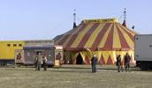 Lifes a Circus_Thumb